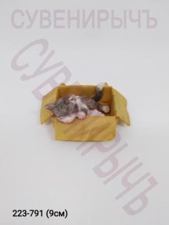 Кот в коробке 9809