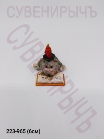 Кот с книгой ED11148H