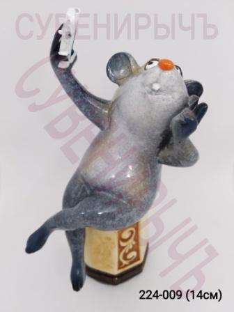 Мышка Сэлфи сидит 71075