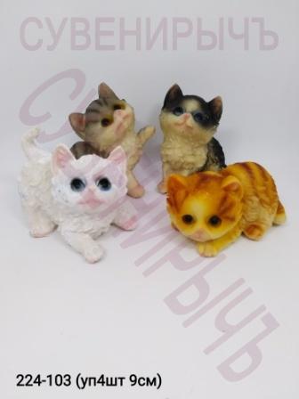 Котята уп4 Cat001