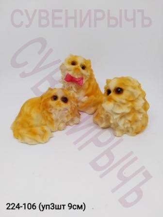 Коты Персы уп3 Cat003