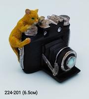 Кот с камерой 14055
