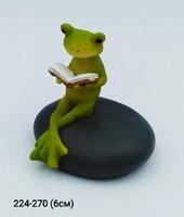 Лягушка Читатель 8584