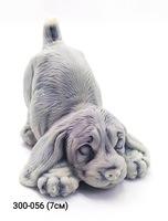 Мраморная крошка Собака Щенок играет мал